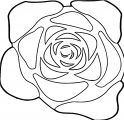 Rose File Tag List Rose Clip Arts File Coloring Page