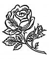 Rose Flower Classic Coloring Page