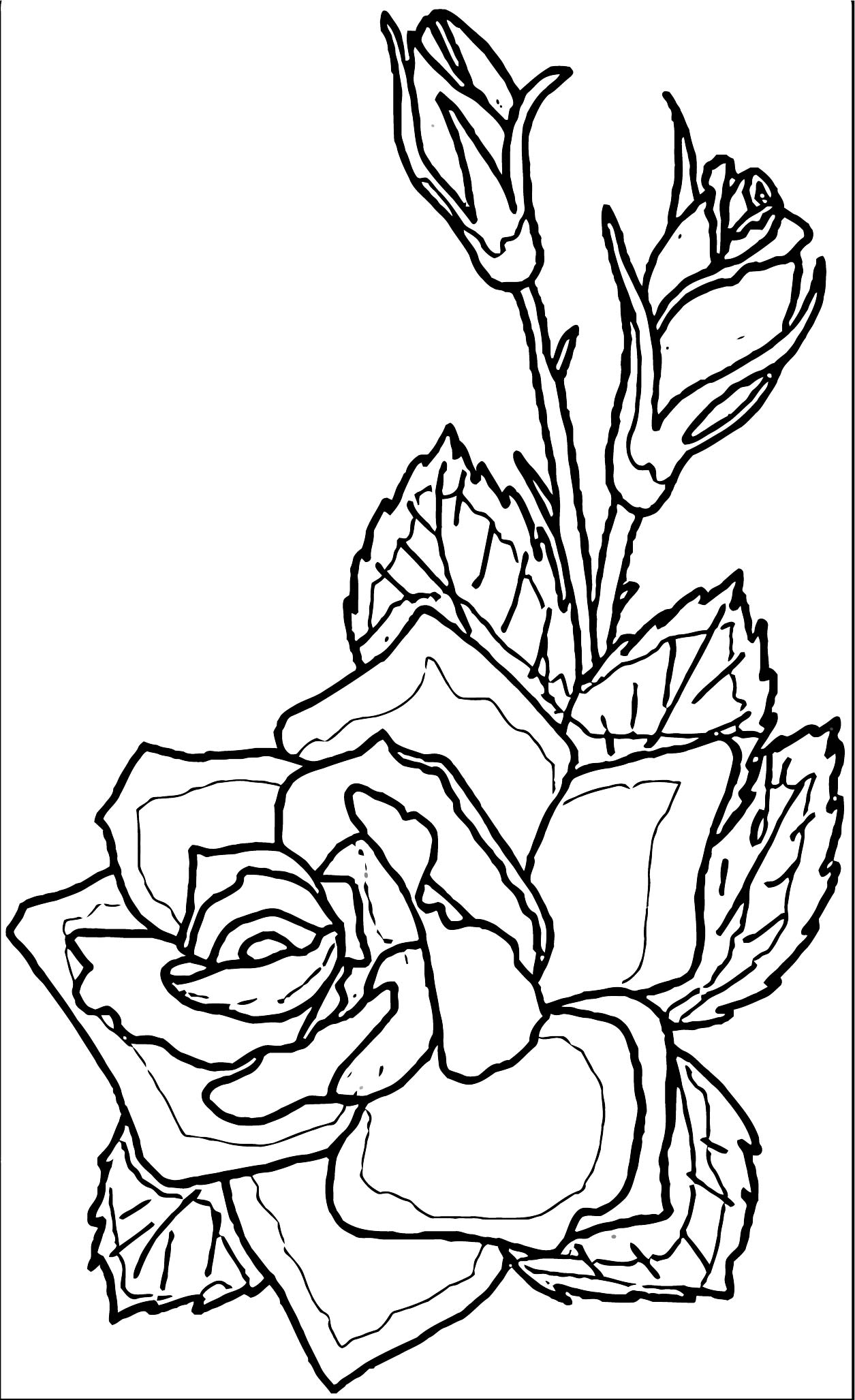 Rose Flower Coloring Page 006