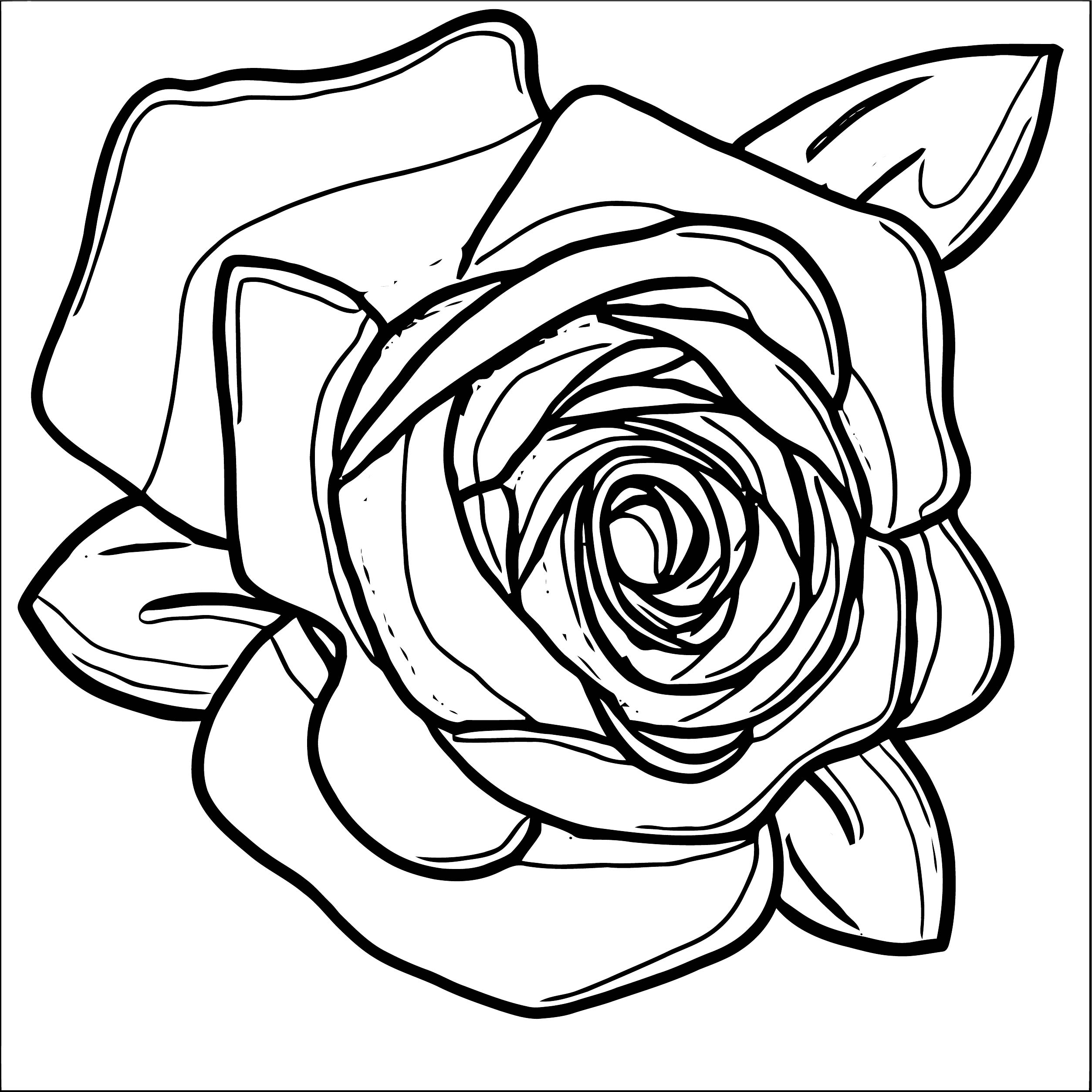 Rose Flower Coloring Page 011