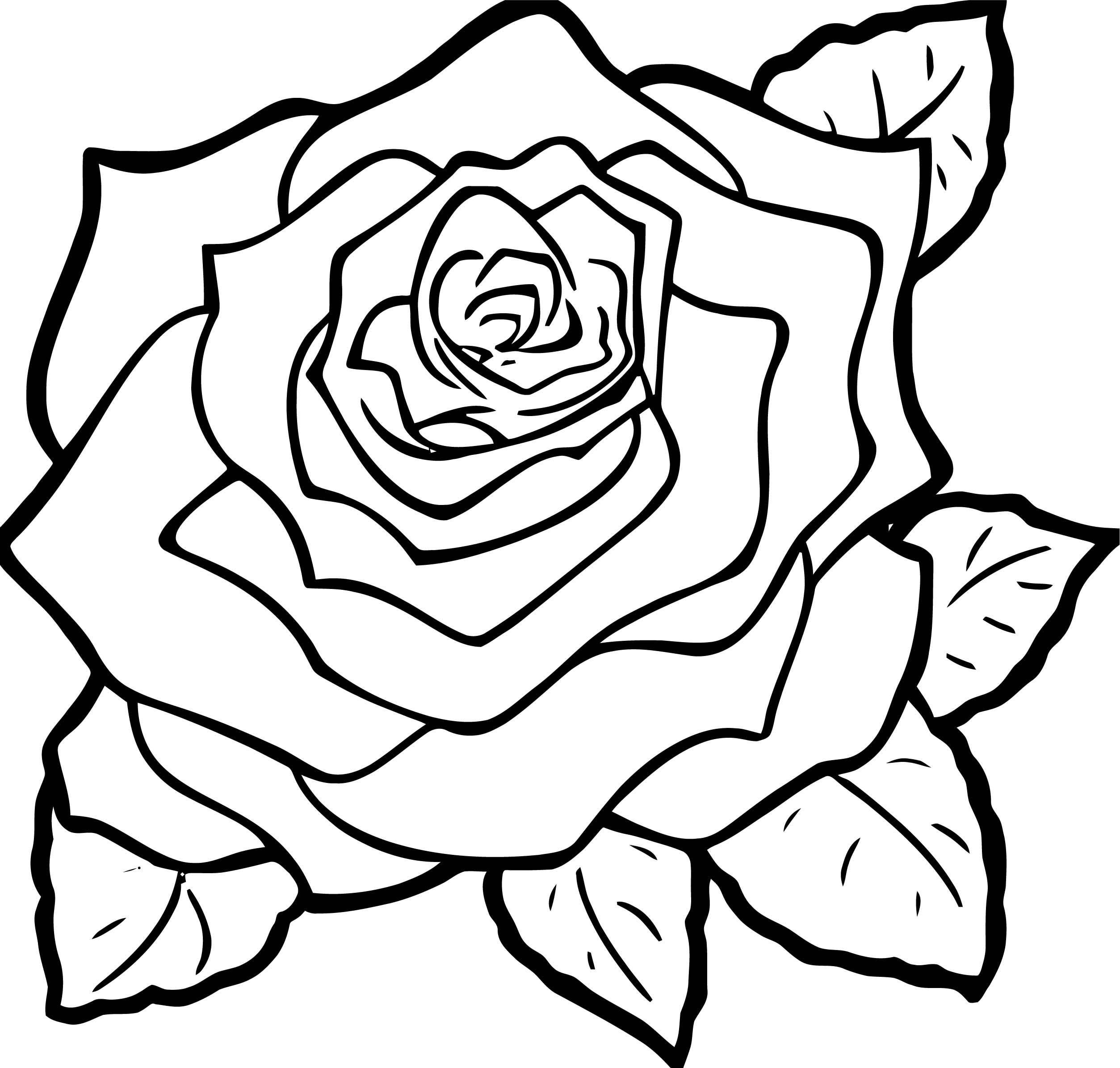 Rose Flower Coloring Page 018