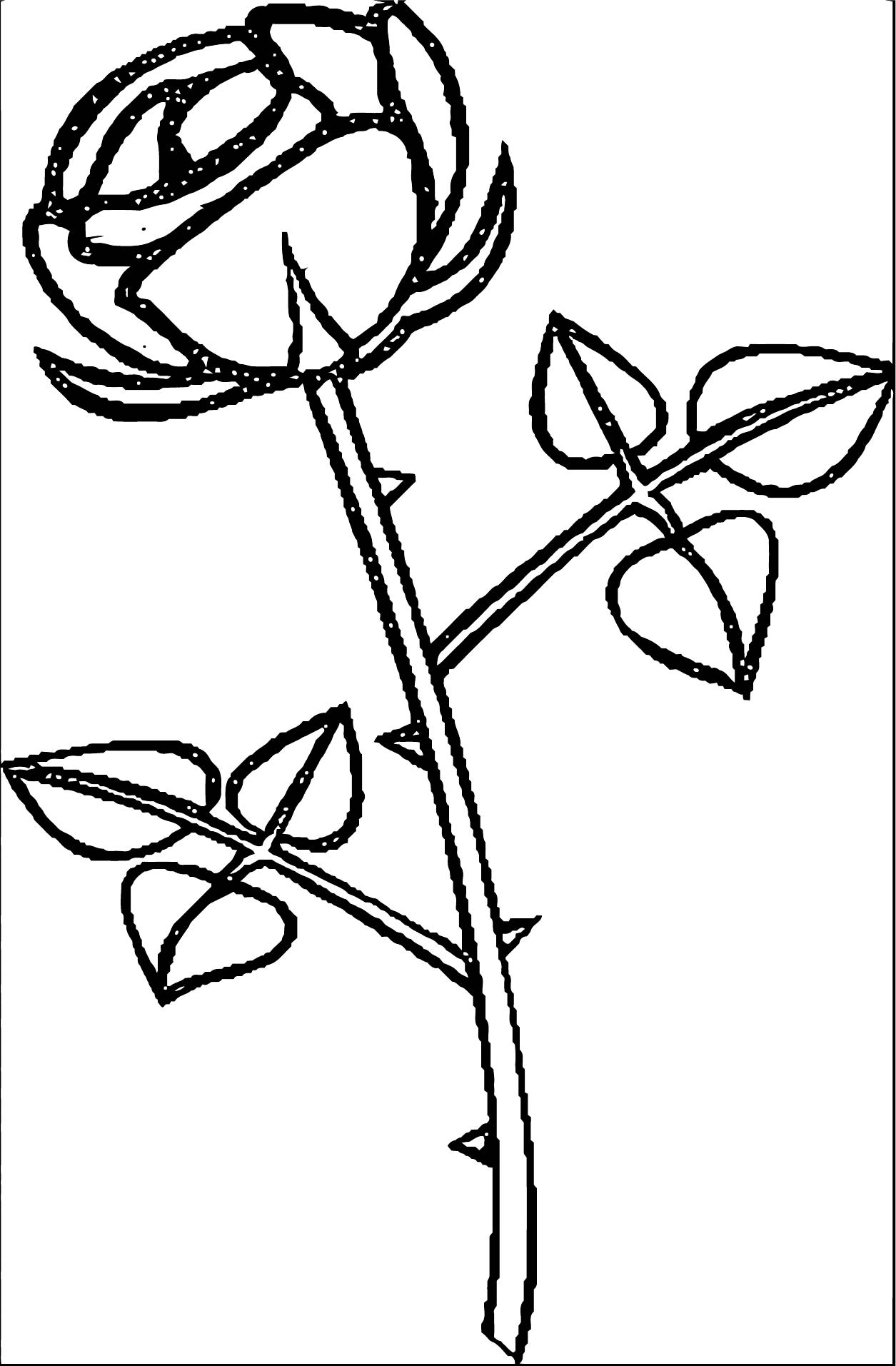Rose Flower Coloring Page 038