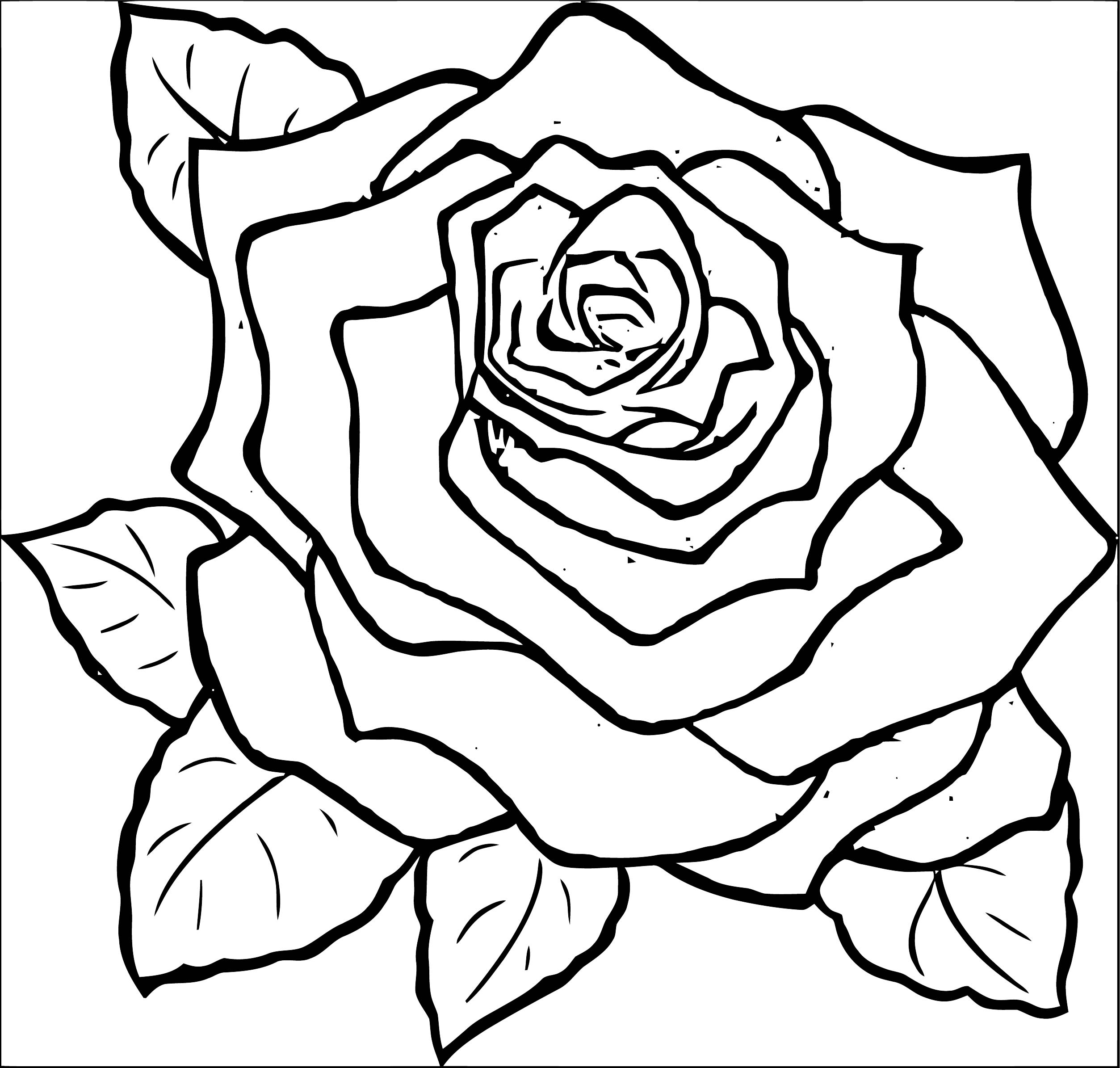 Rose Flower Coloring Page 039