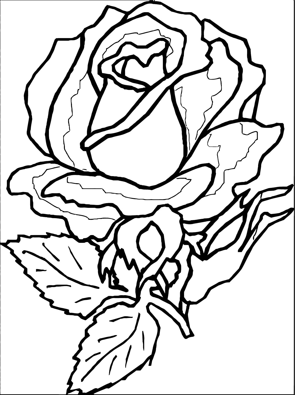 Rose Flower Coloring Page 069
