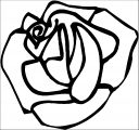 Rose Flower Coloring Page 127