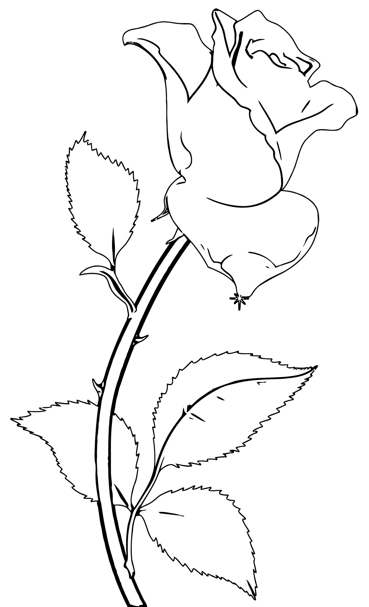 Rose Flower Coloring Page 136