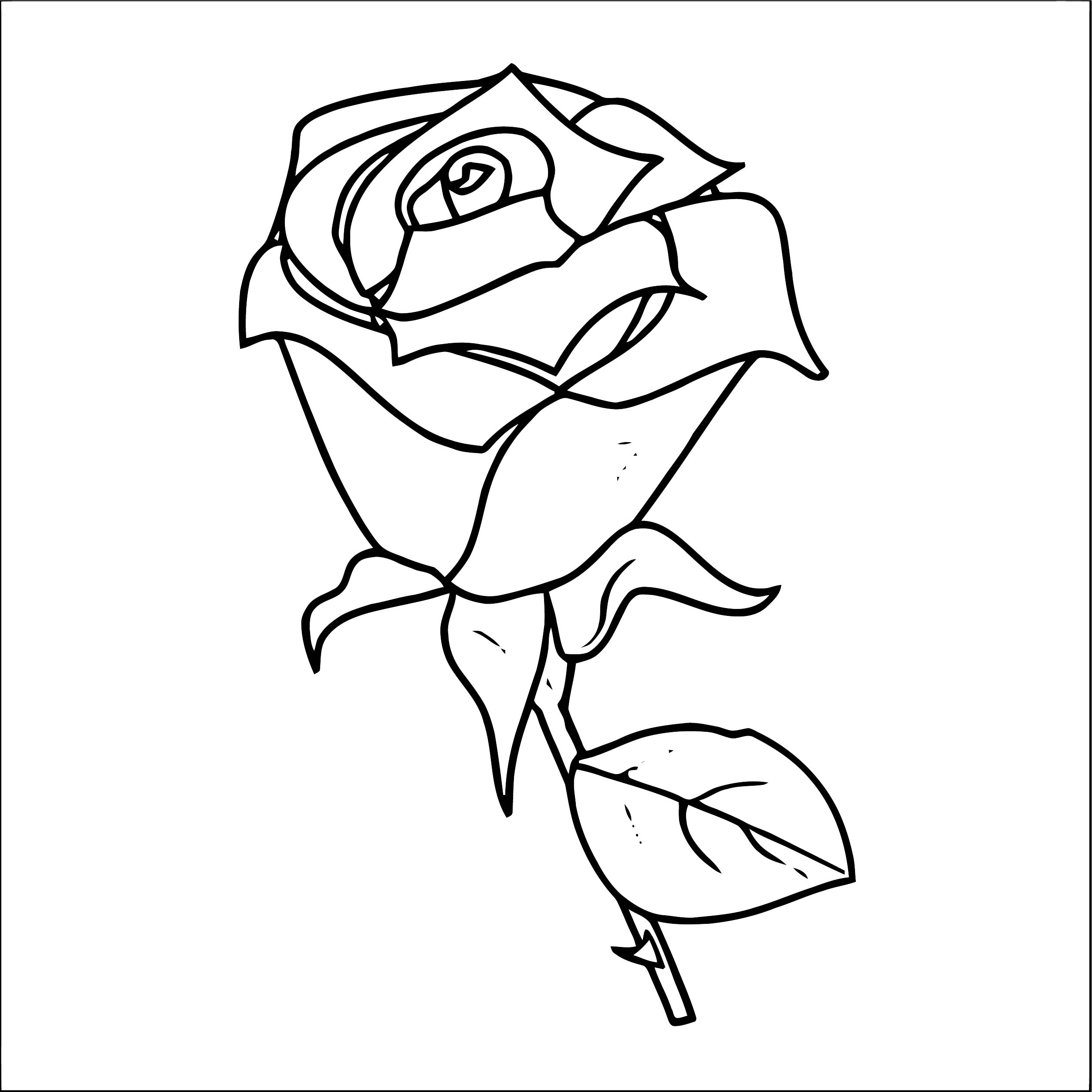 Rose Flower Coloring Page 150