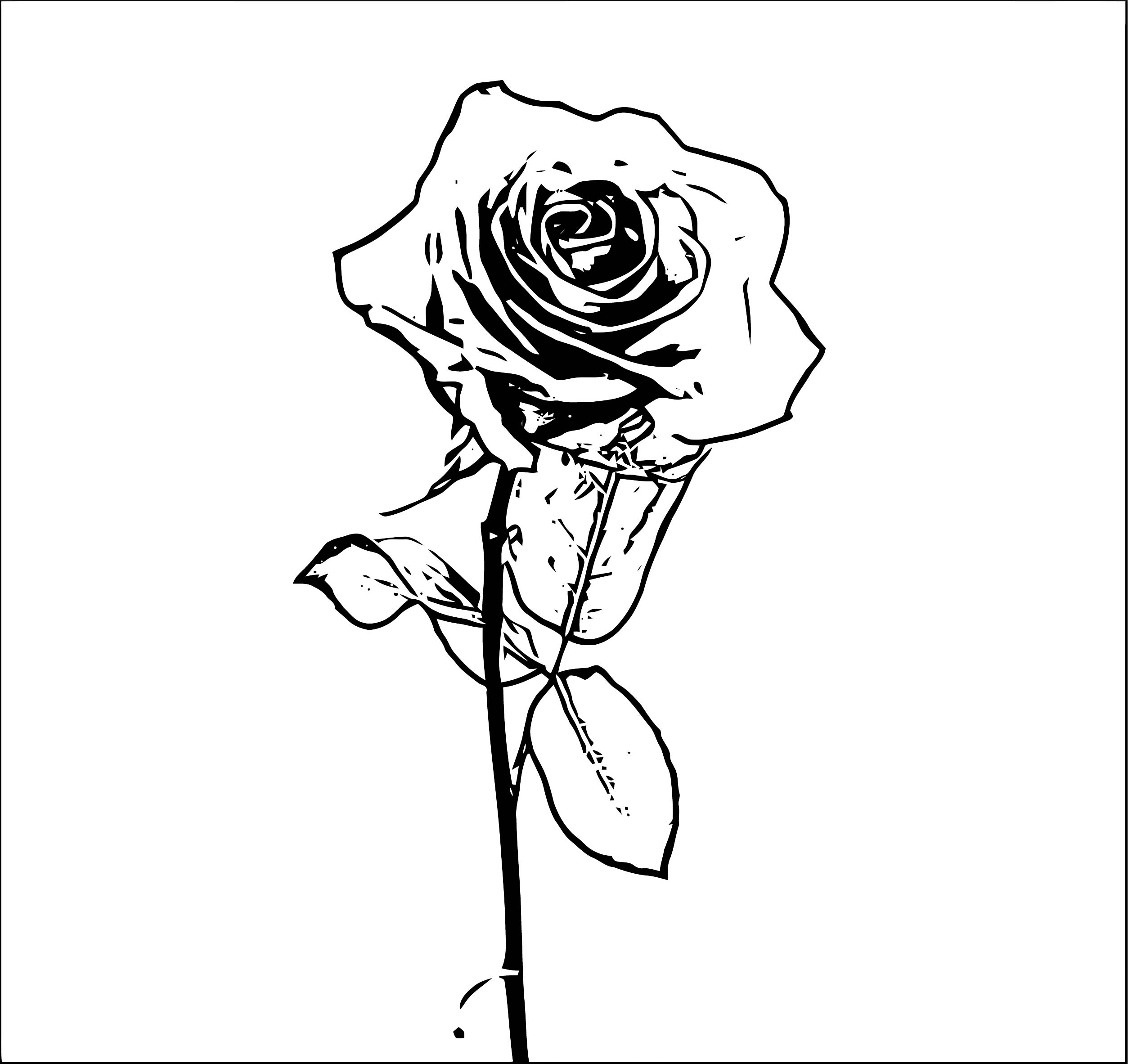 Rose Flower Coloring Page 156