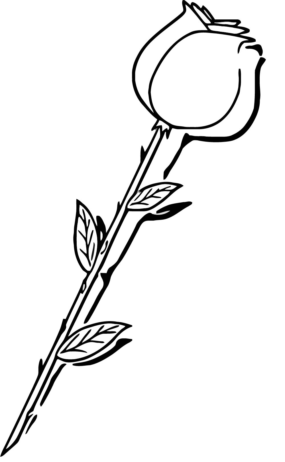Rose Long Stem Red Coloring Page