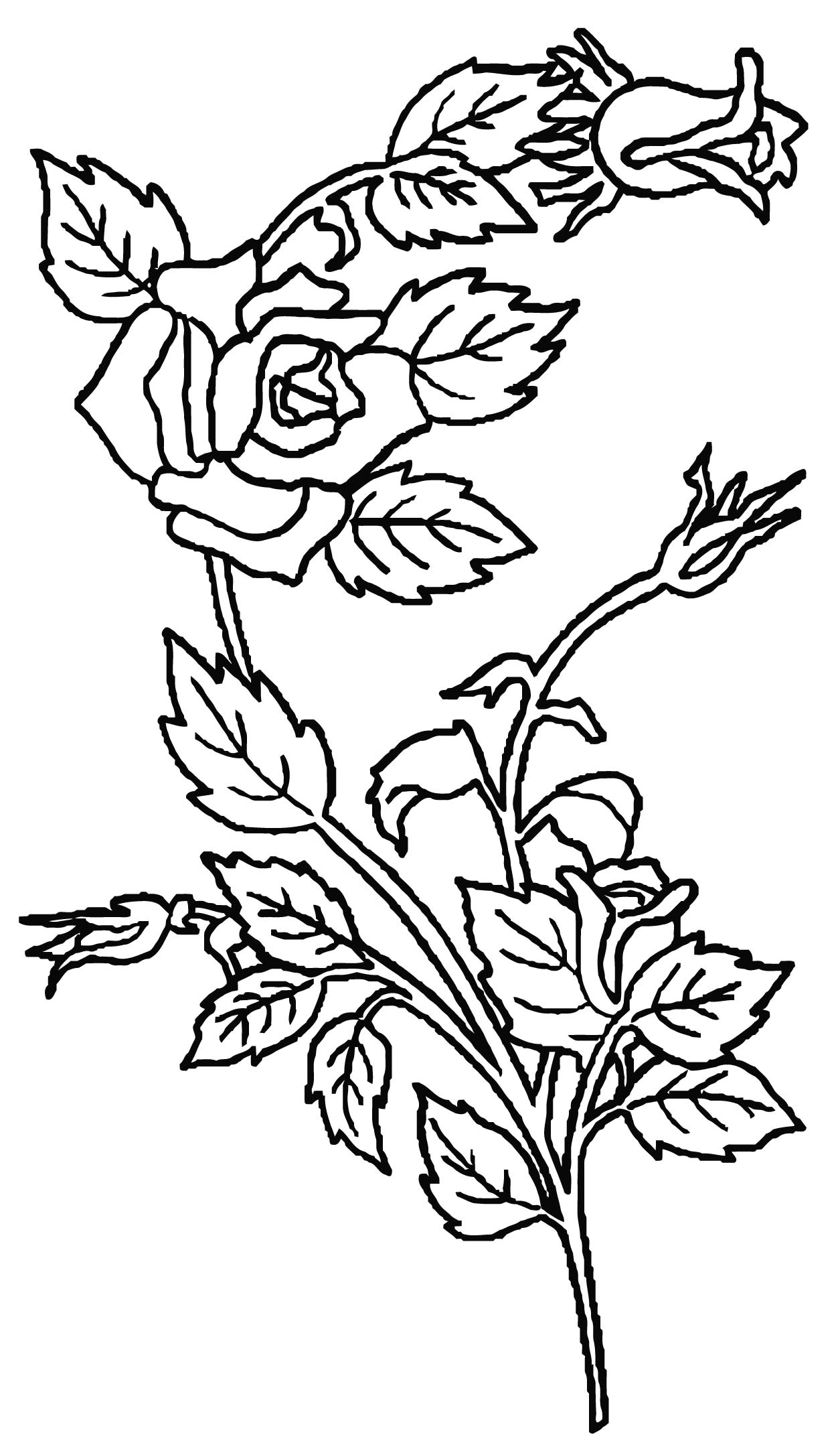 Science Rose Plant Coloring Page