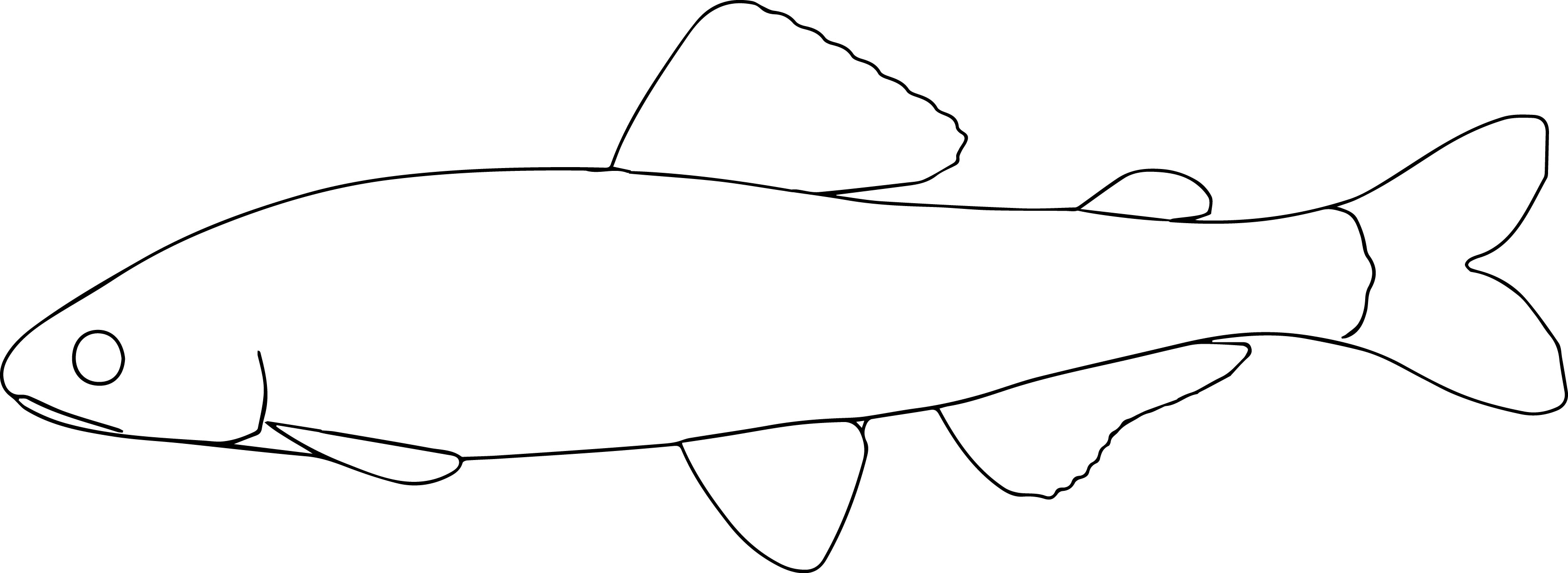Ayu Coloring Pages Fish