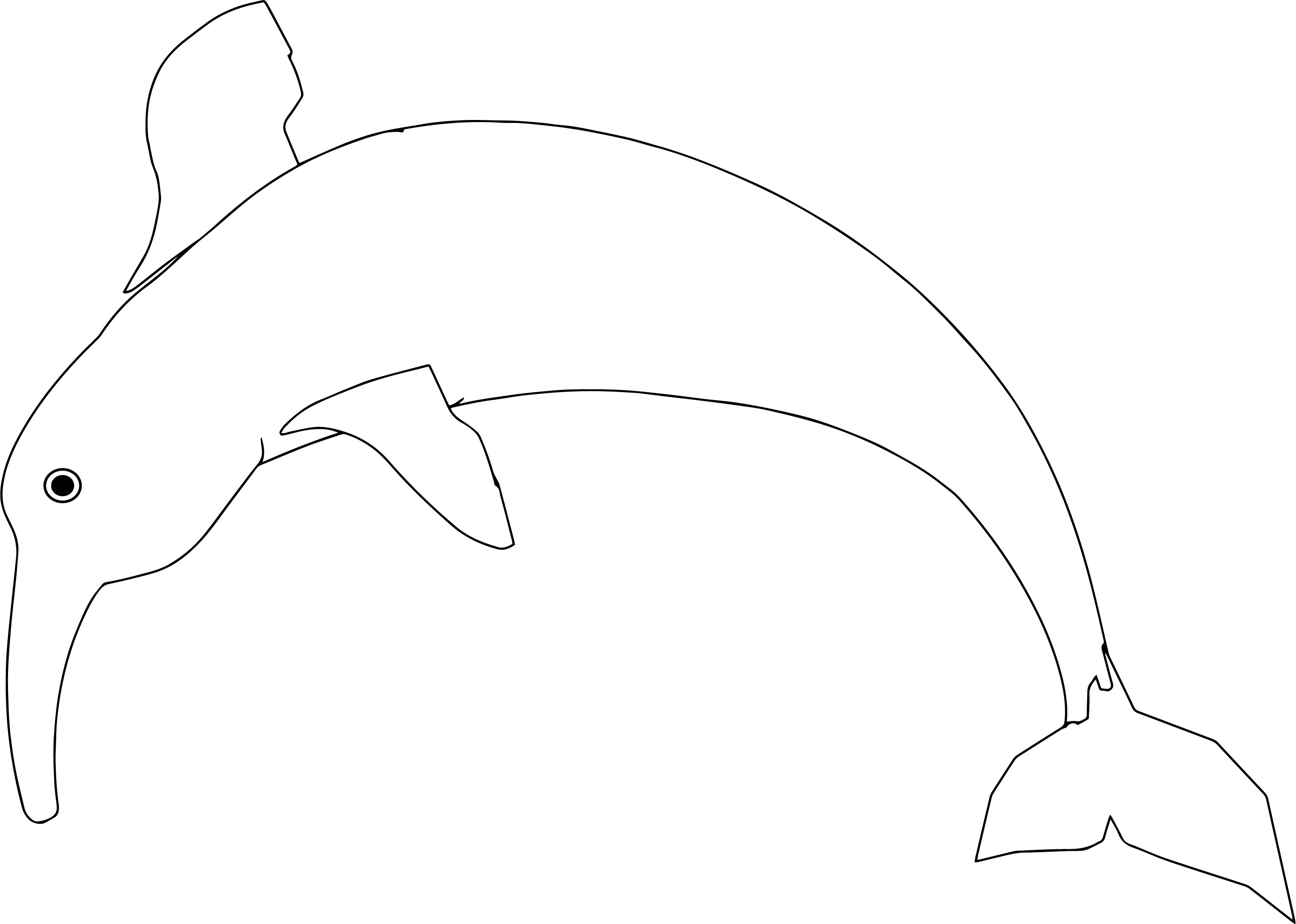 Dolphin Jump Coloring Page