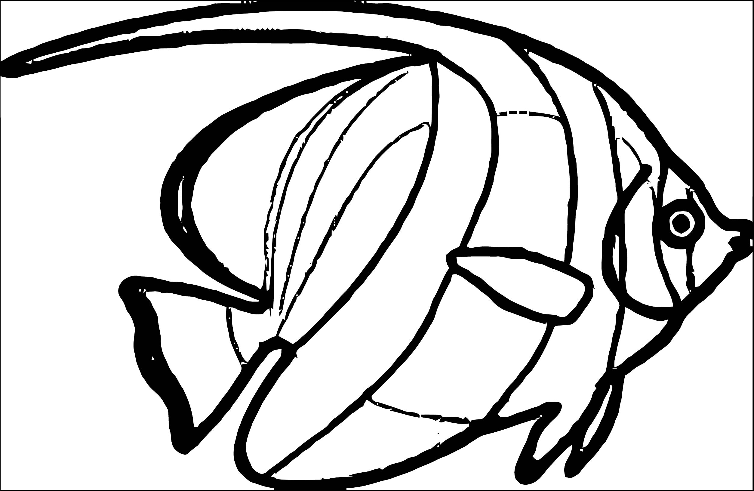 Fish Coloring Page WeColoringPage 107