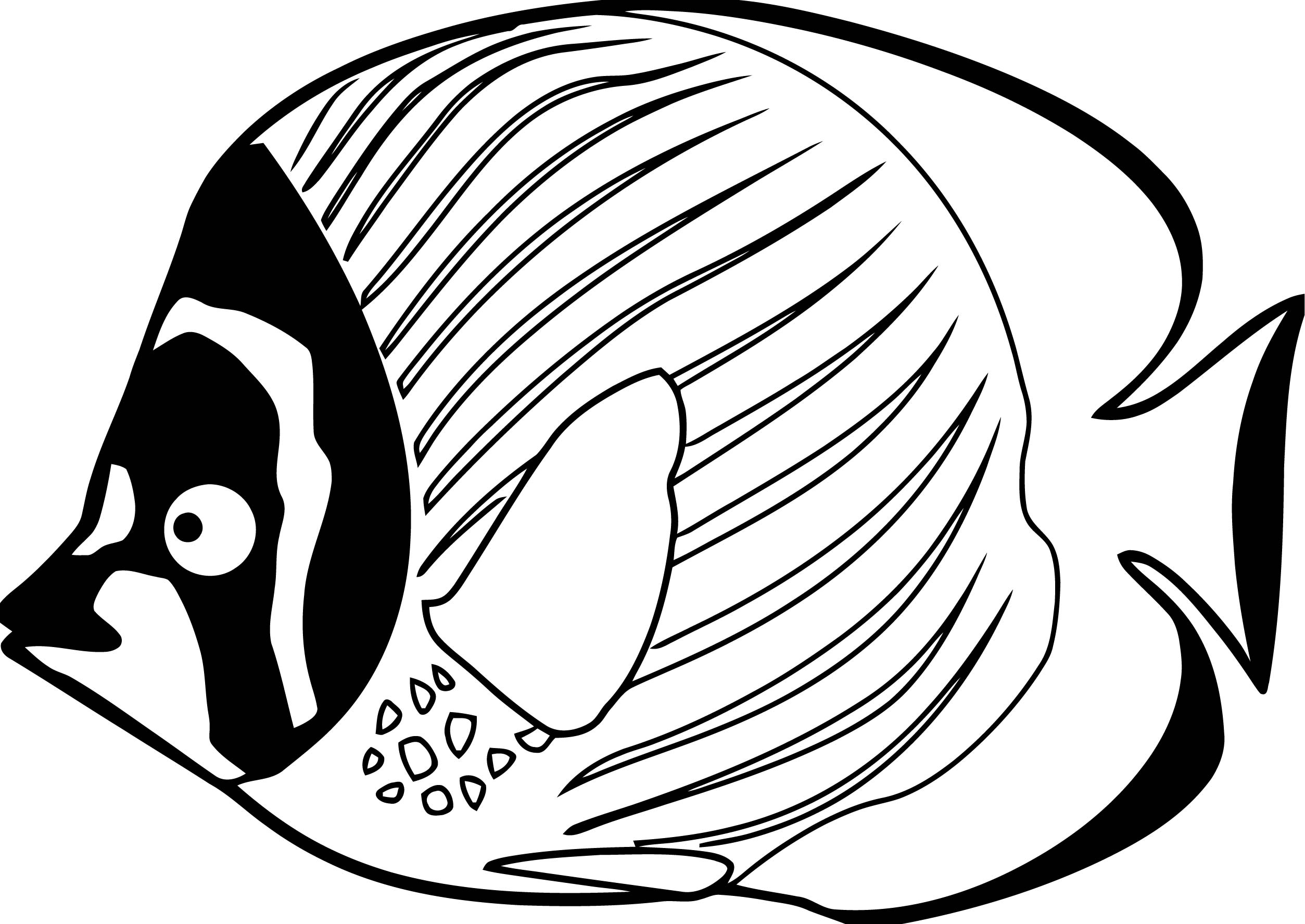 Fish Coloring Page WeColoringPage 110