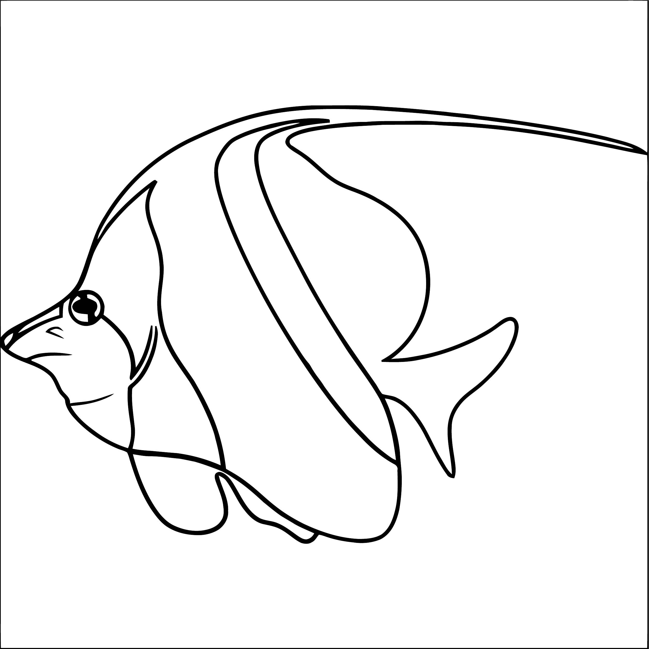 Fish Coloring Page WeColoringPage 129