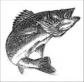 Fish Coloring Page WeColoringPage 130