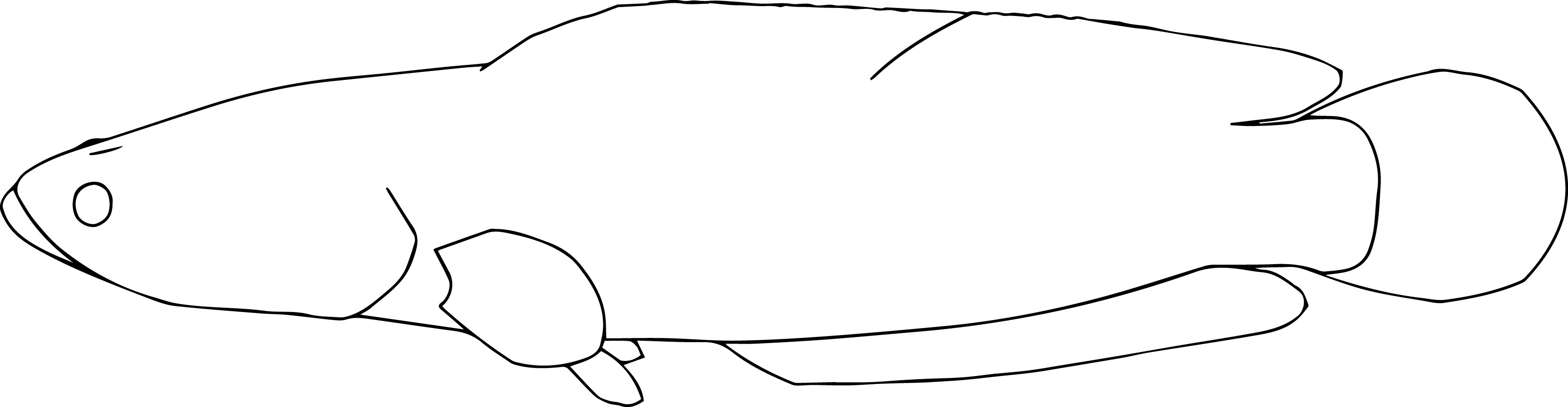 Fish31 Coloring Page