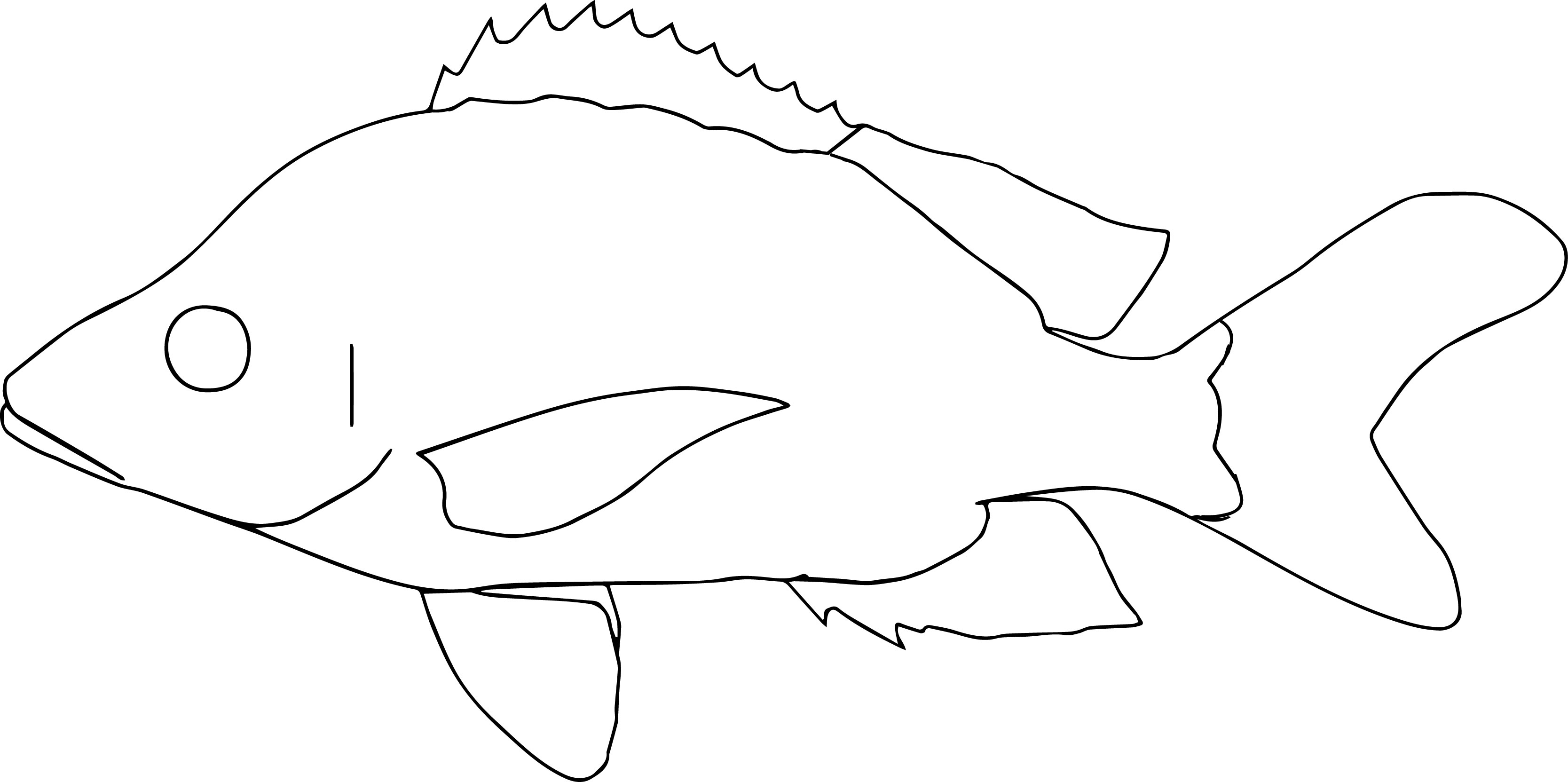 Humpback Fish Coloring Page