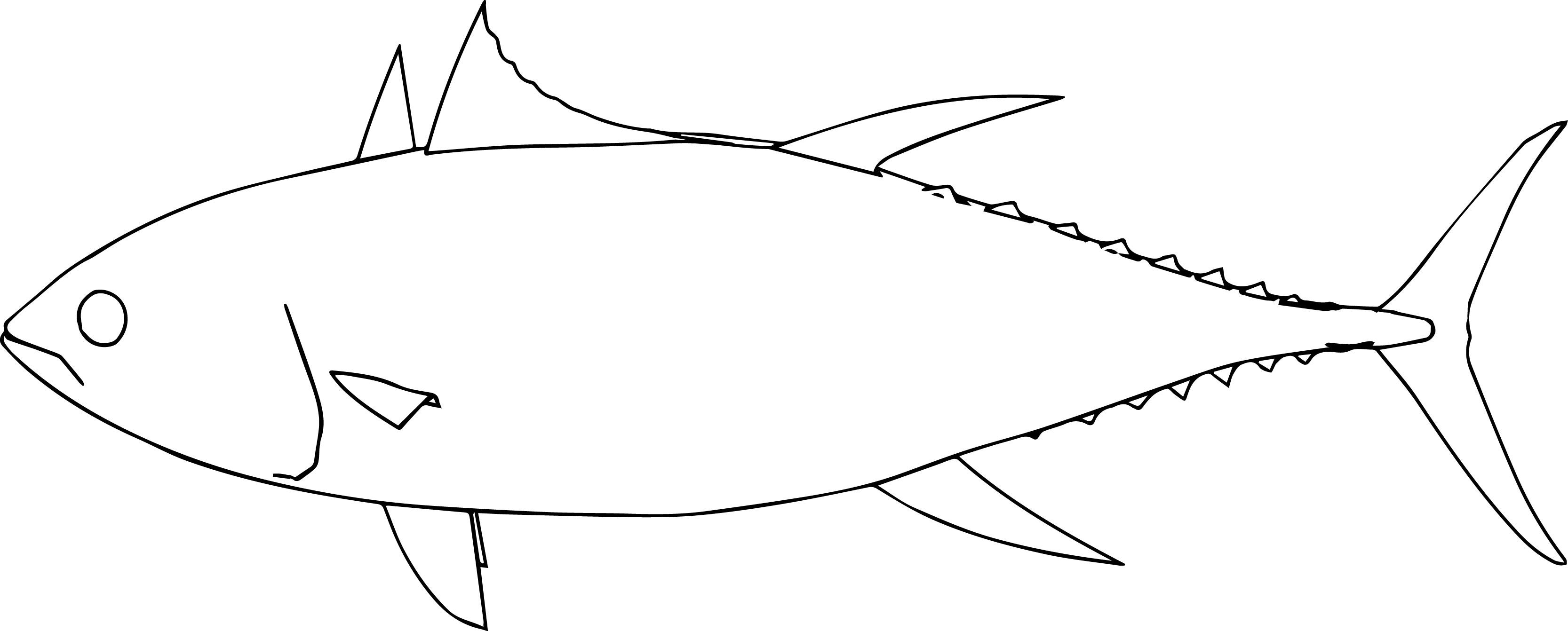 Kihada Fish Coloring Page