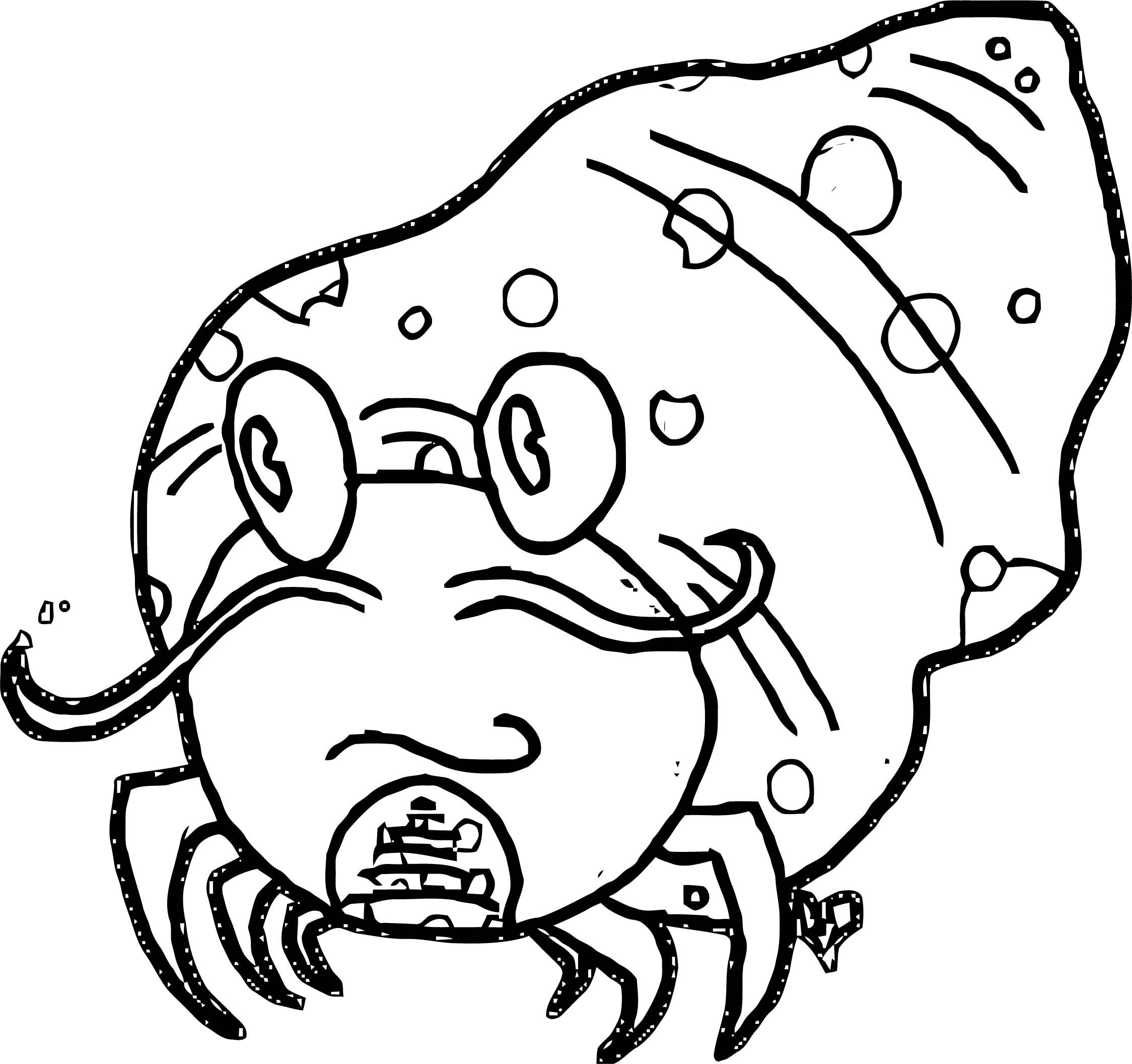 Sea Animals Coloring Page WeColoringPage 22