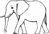 Elephant Coloring Page 75