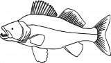 Fish Coloring Page WeColoringPage 022
