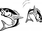 Fish Coloring Page Wecoloringpage 052