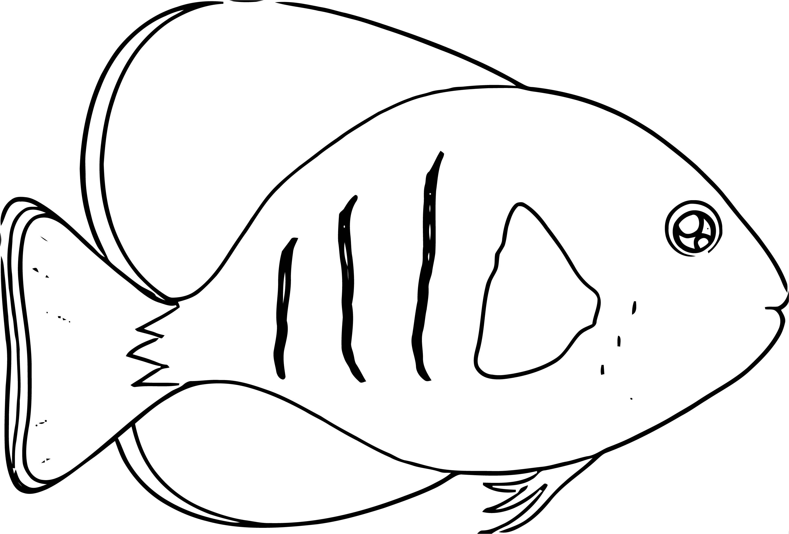 Fish Coloring Page Wecoloringpage 071