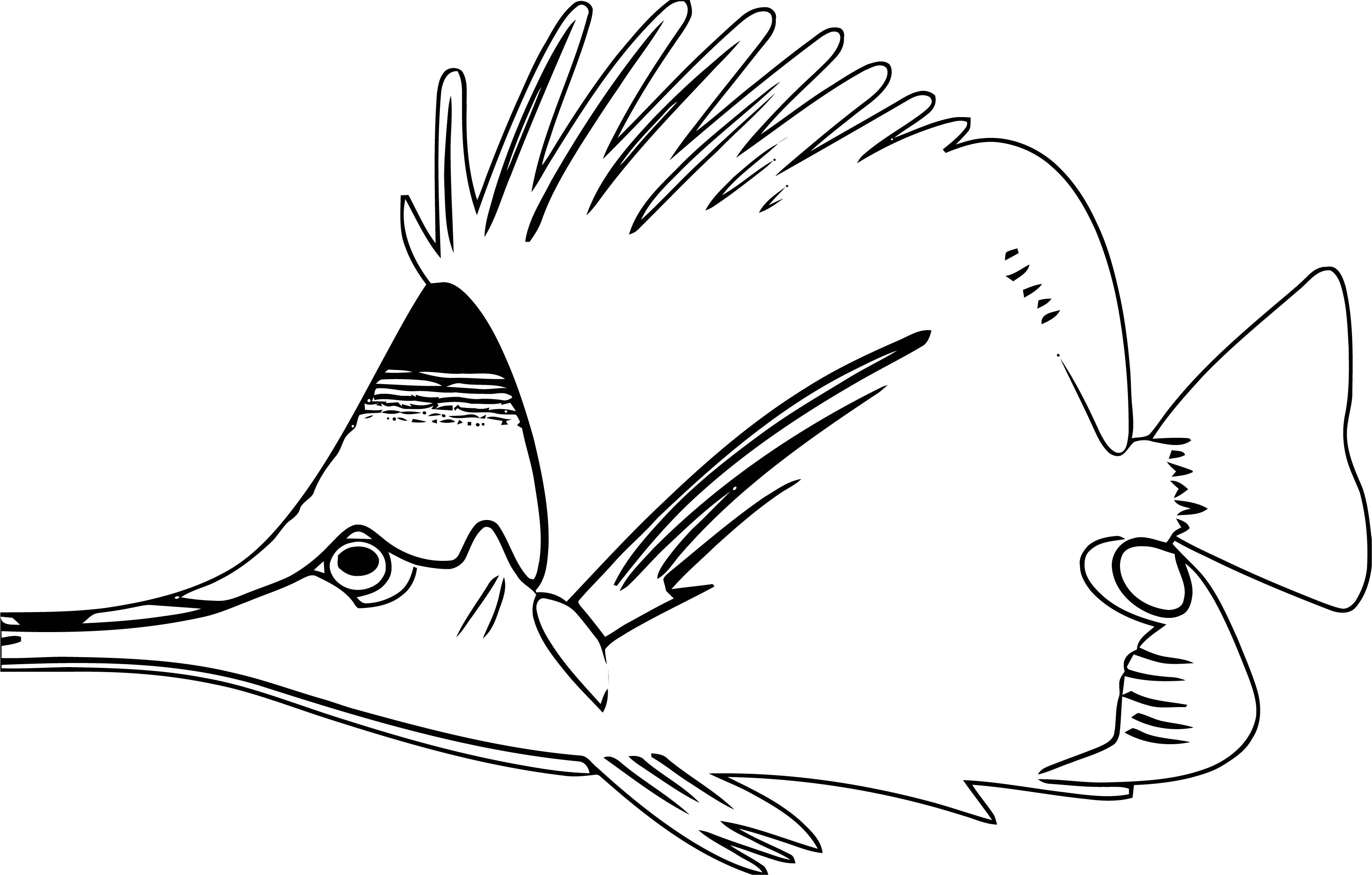 Fish Coloring Page Wecoloringpage 072