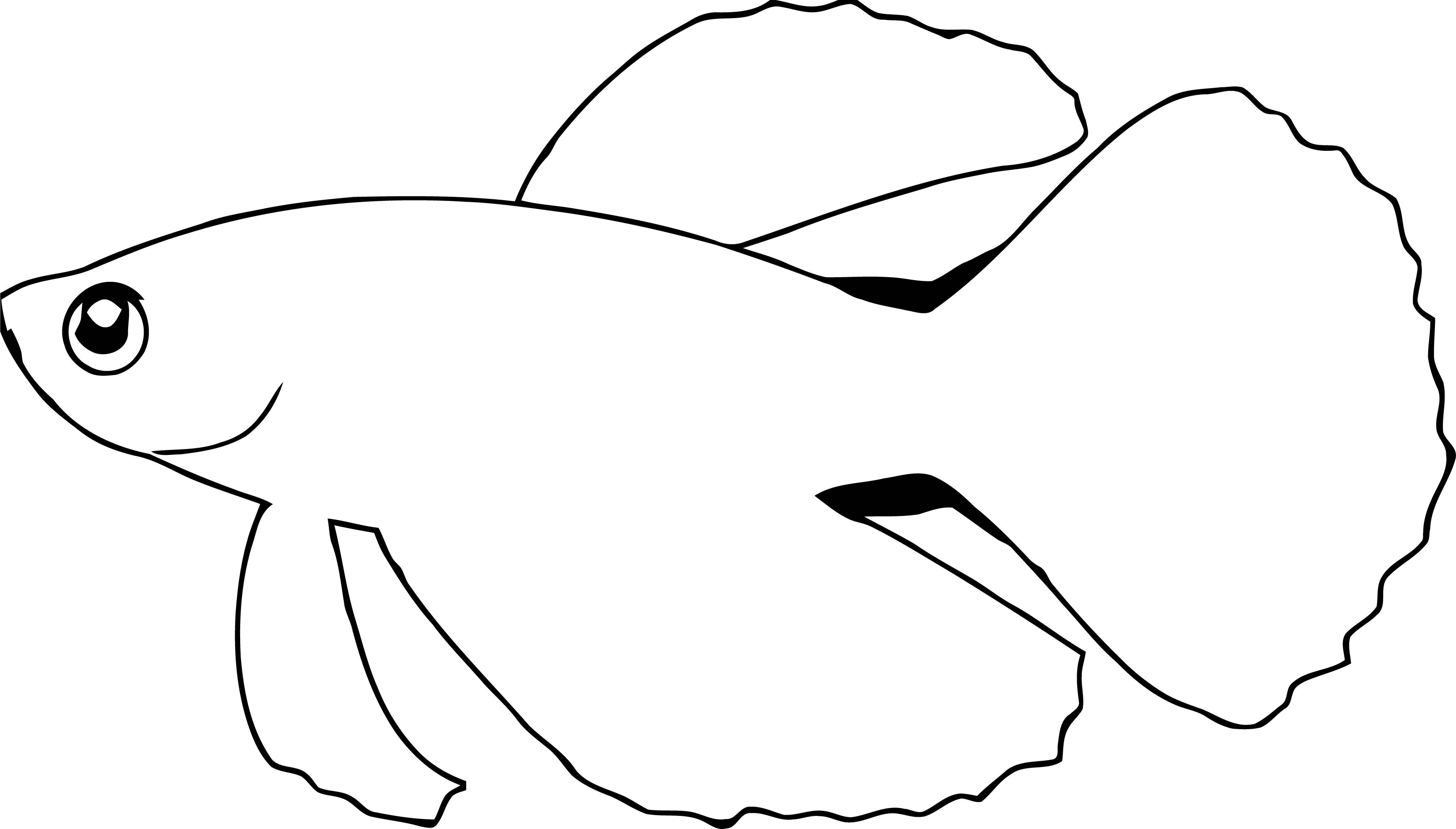 Fish Coloring Page Wecoloringpage 085
