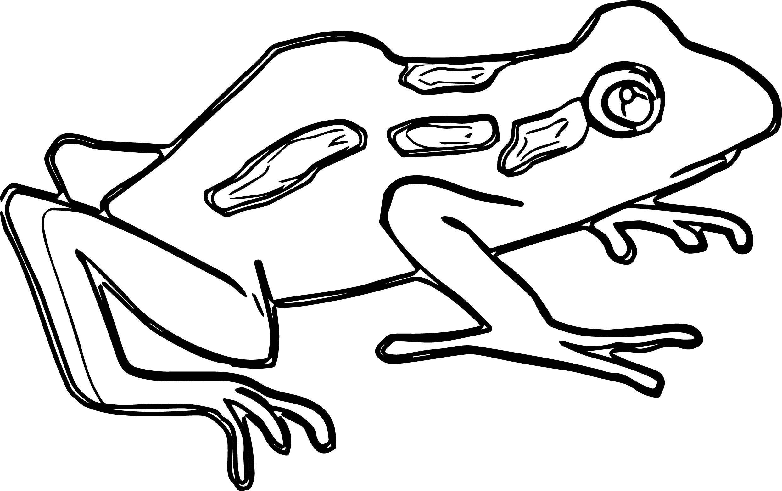 Frog Coloring Page 017