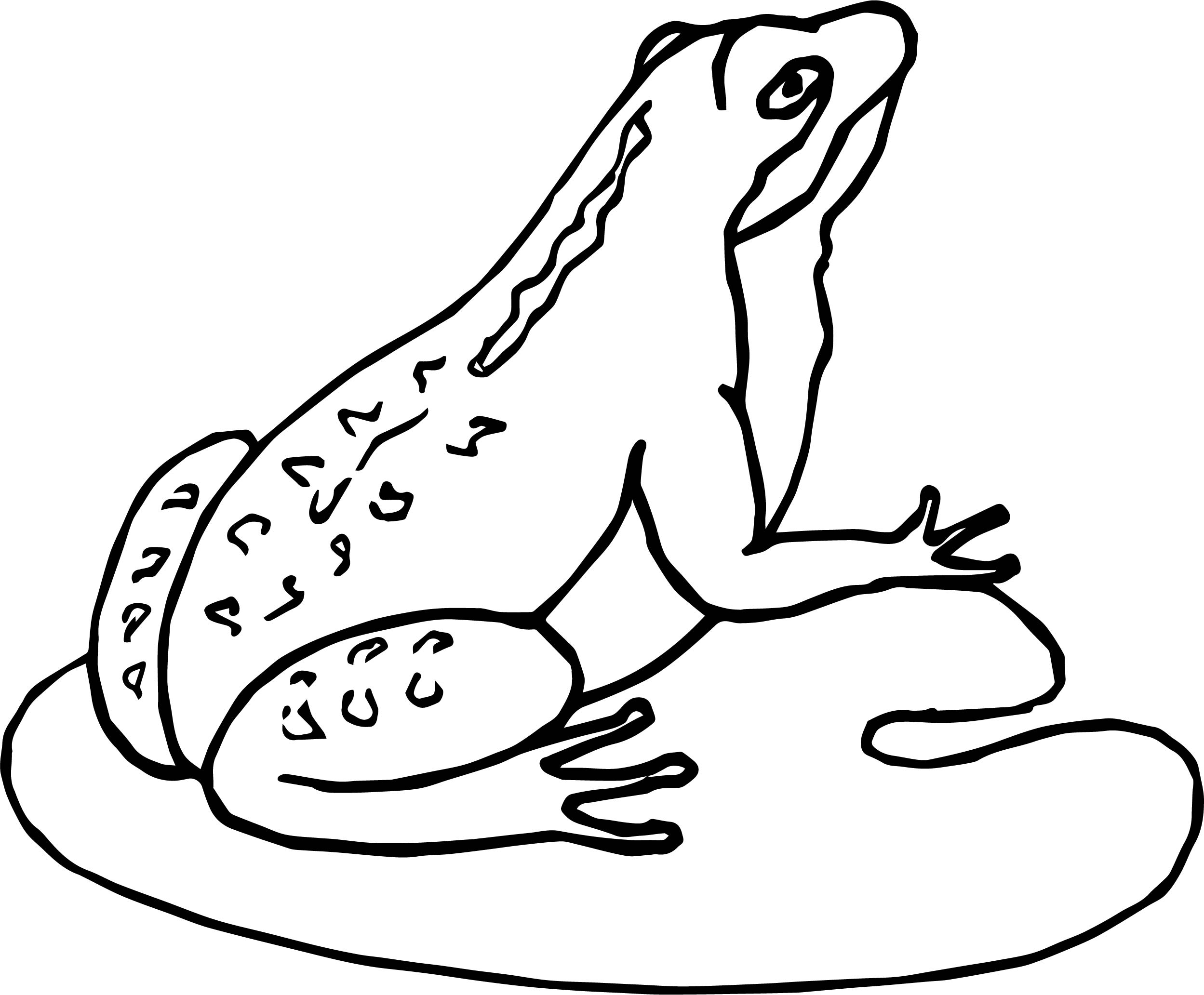 Frog Coloring Page 020