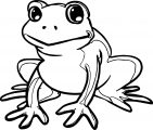 Frog Coloring Page 067