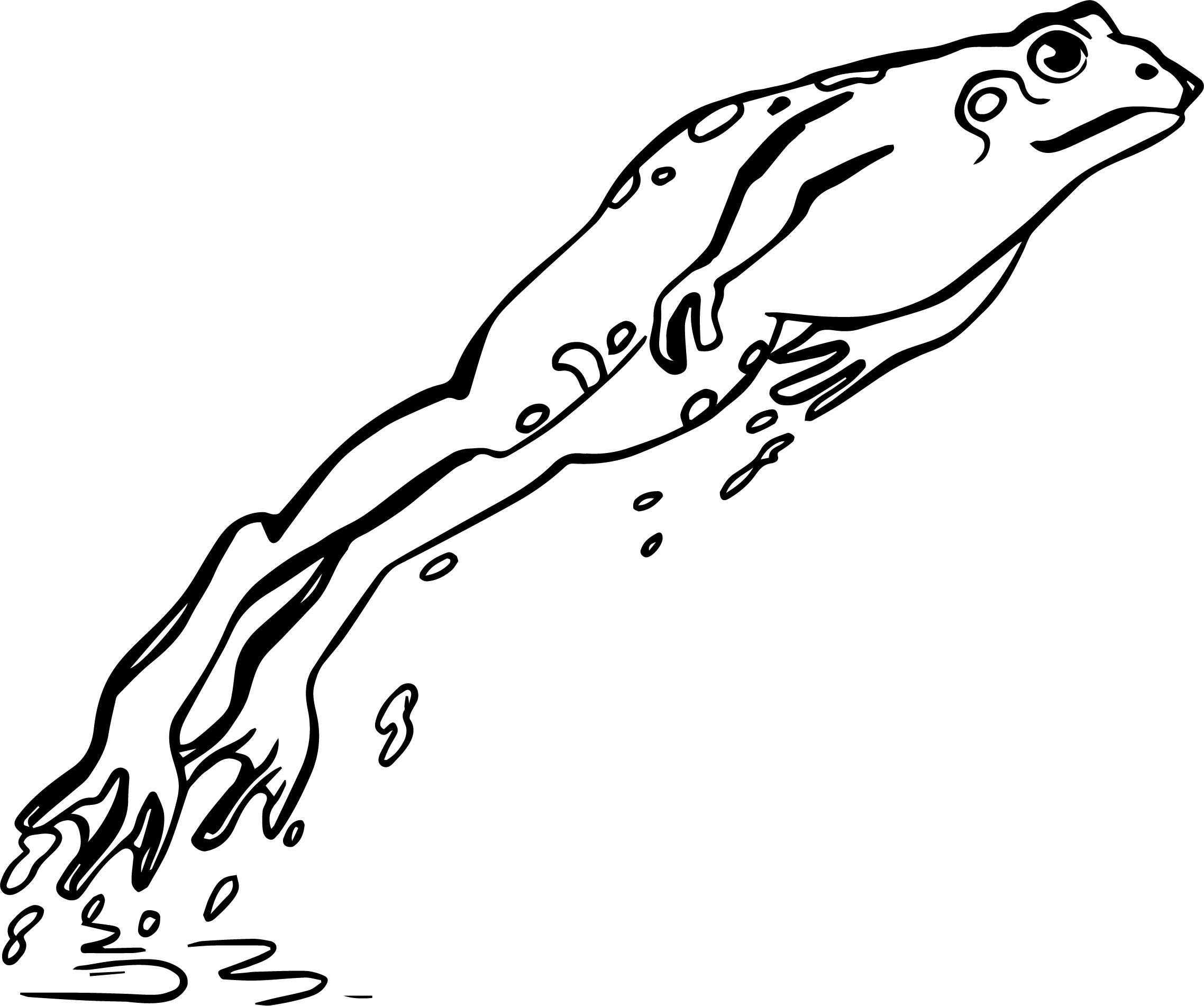 Frog Coloring Page 102