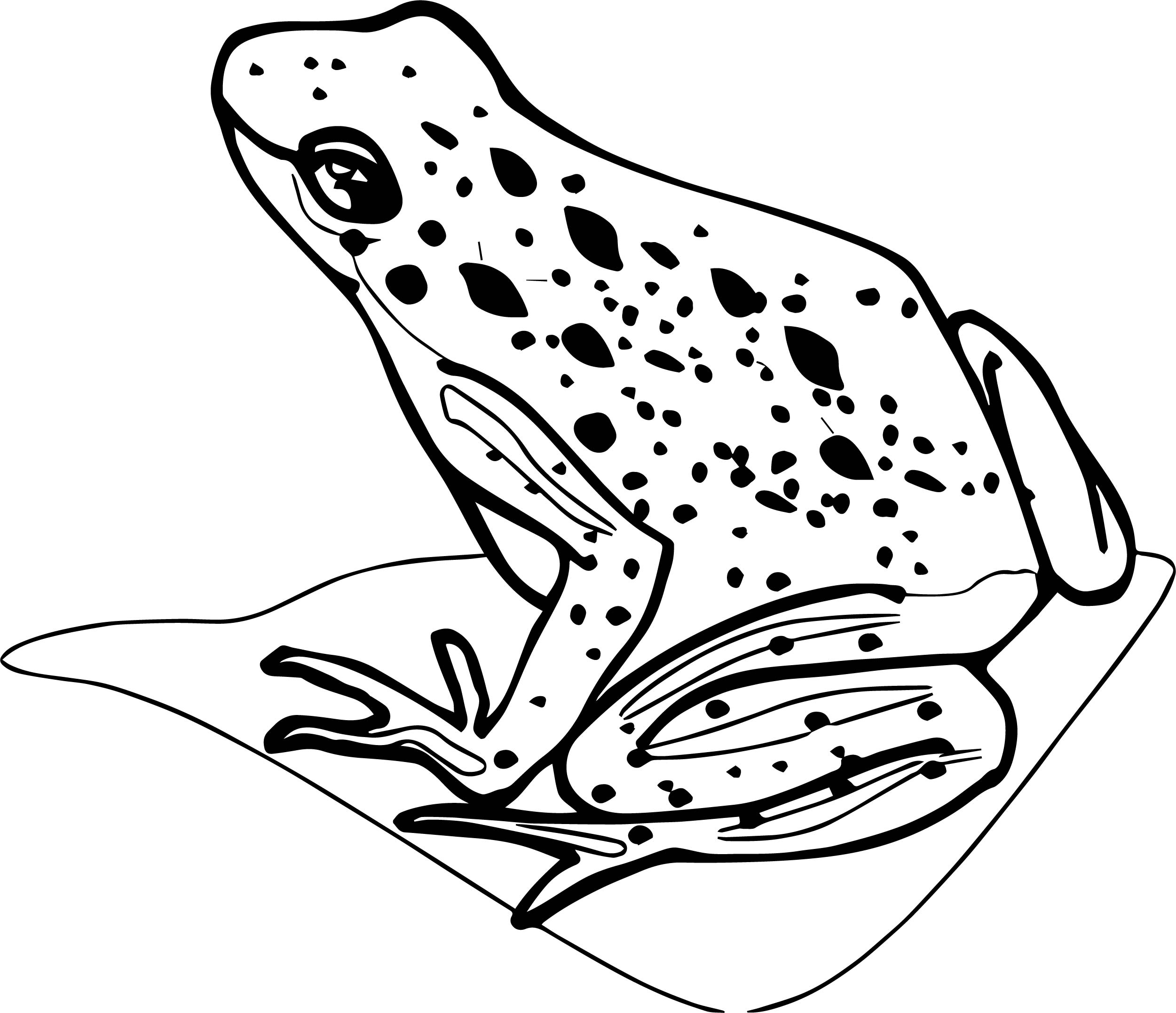 Frog Coloring Page 108