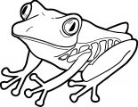 Frog Coloring Page 197