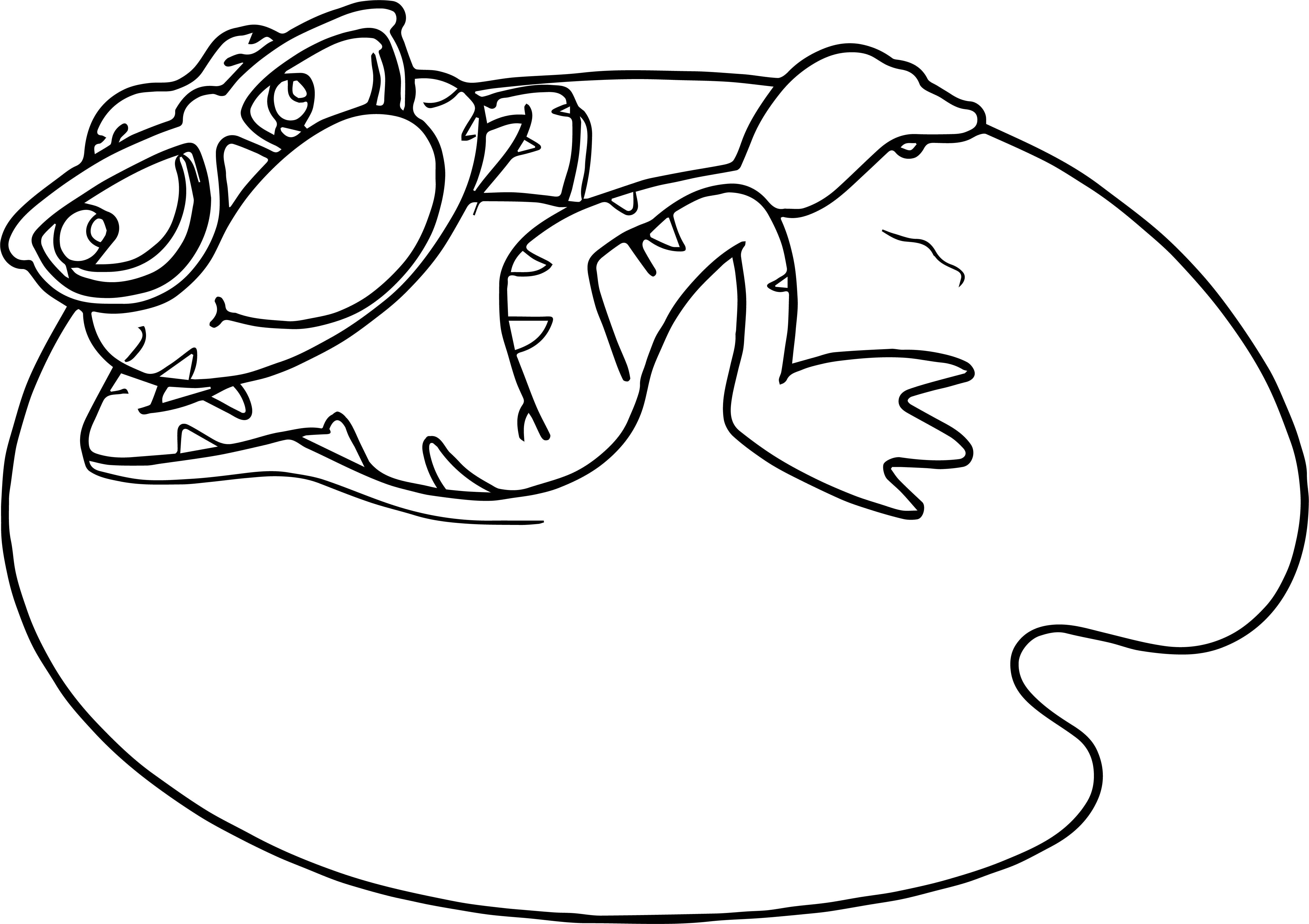 Frog Palette Coloring Page