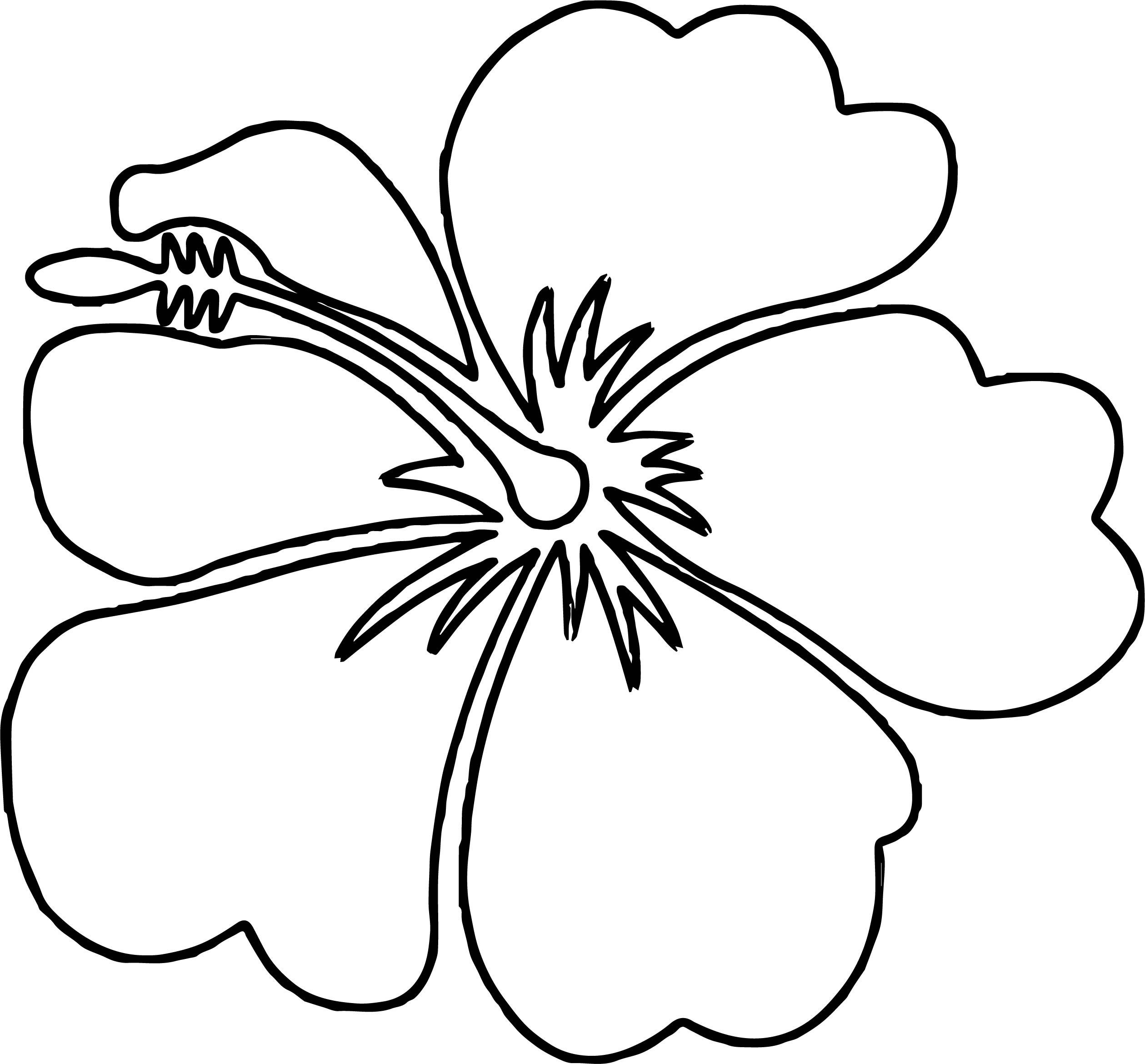 Hawaiian Flower Coloring Page WeColoringPage 04