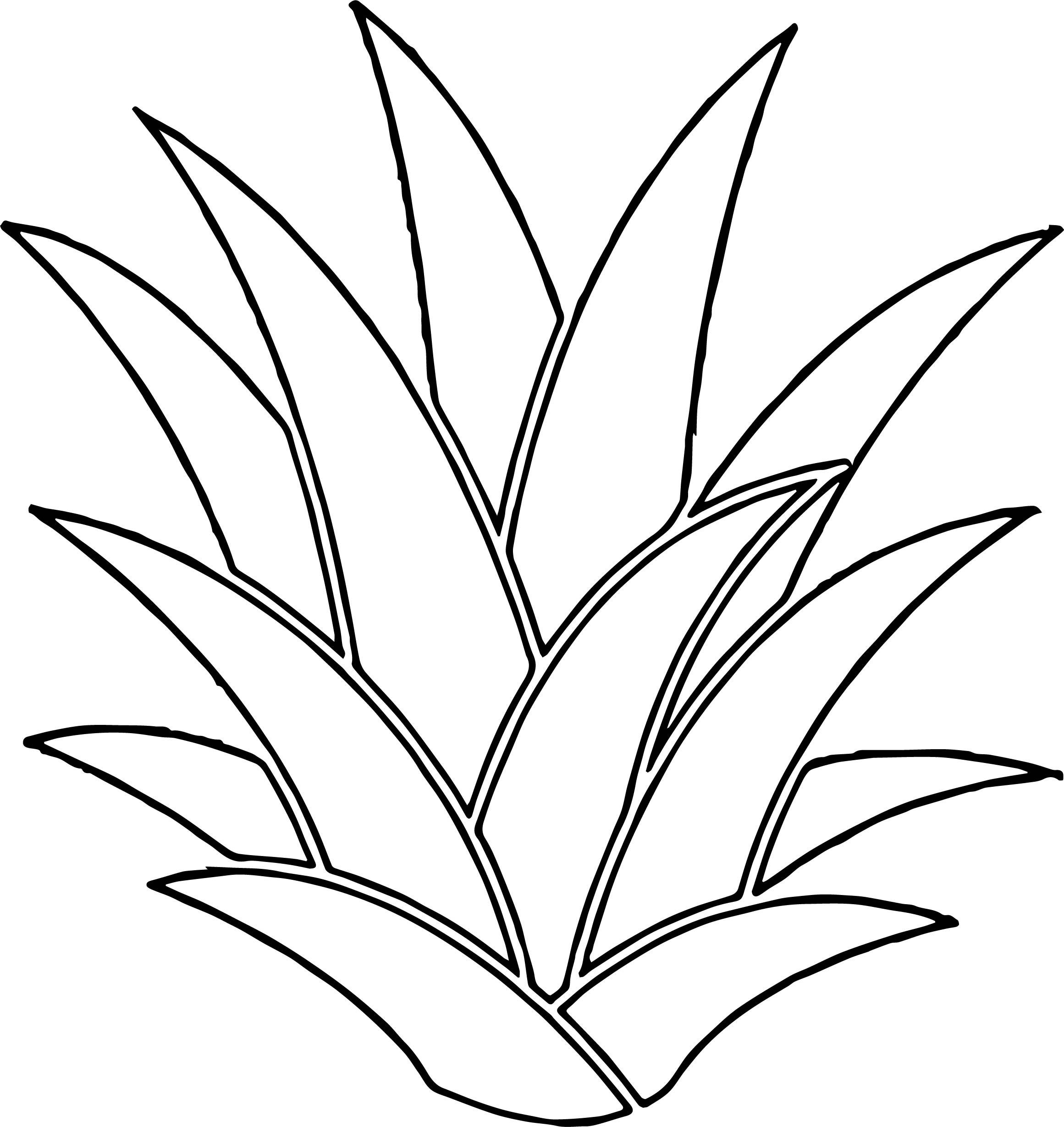 Hawaiian Flower Coloring Page WeColoringPage 06