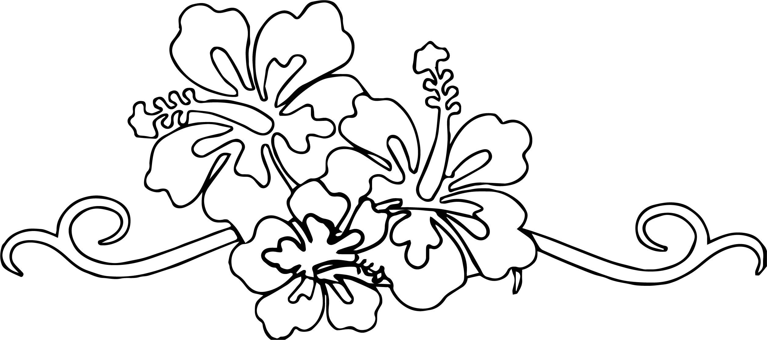 Hawaiian Flower Coloring Page WeColoringPage 08