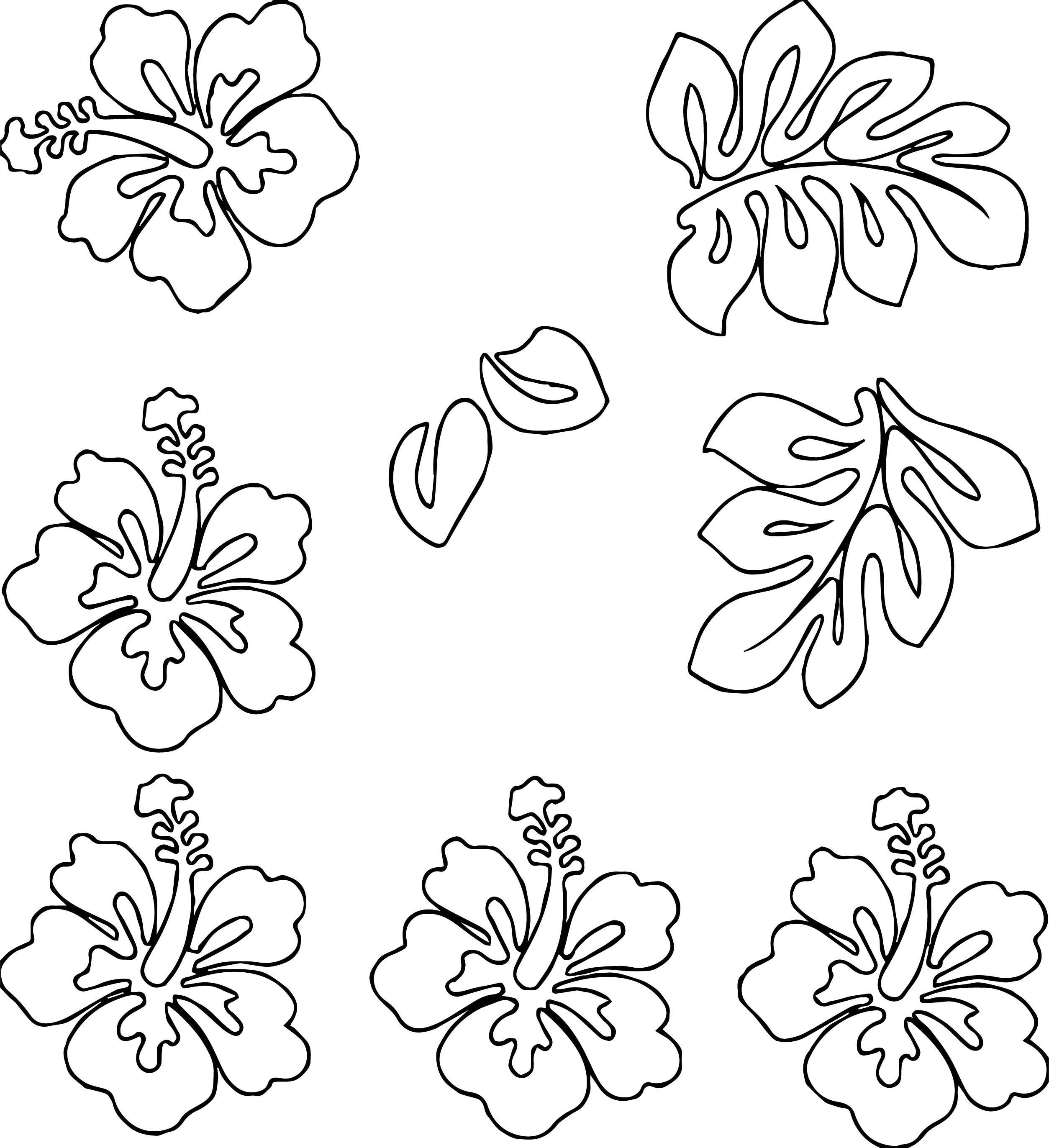 Hawaiian Flower Coloring Page WeColoringPage 09