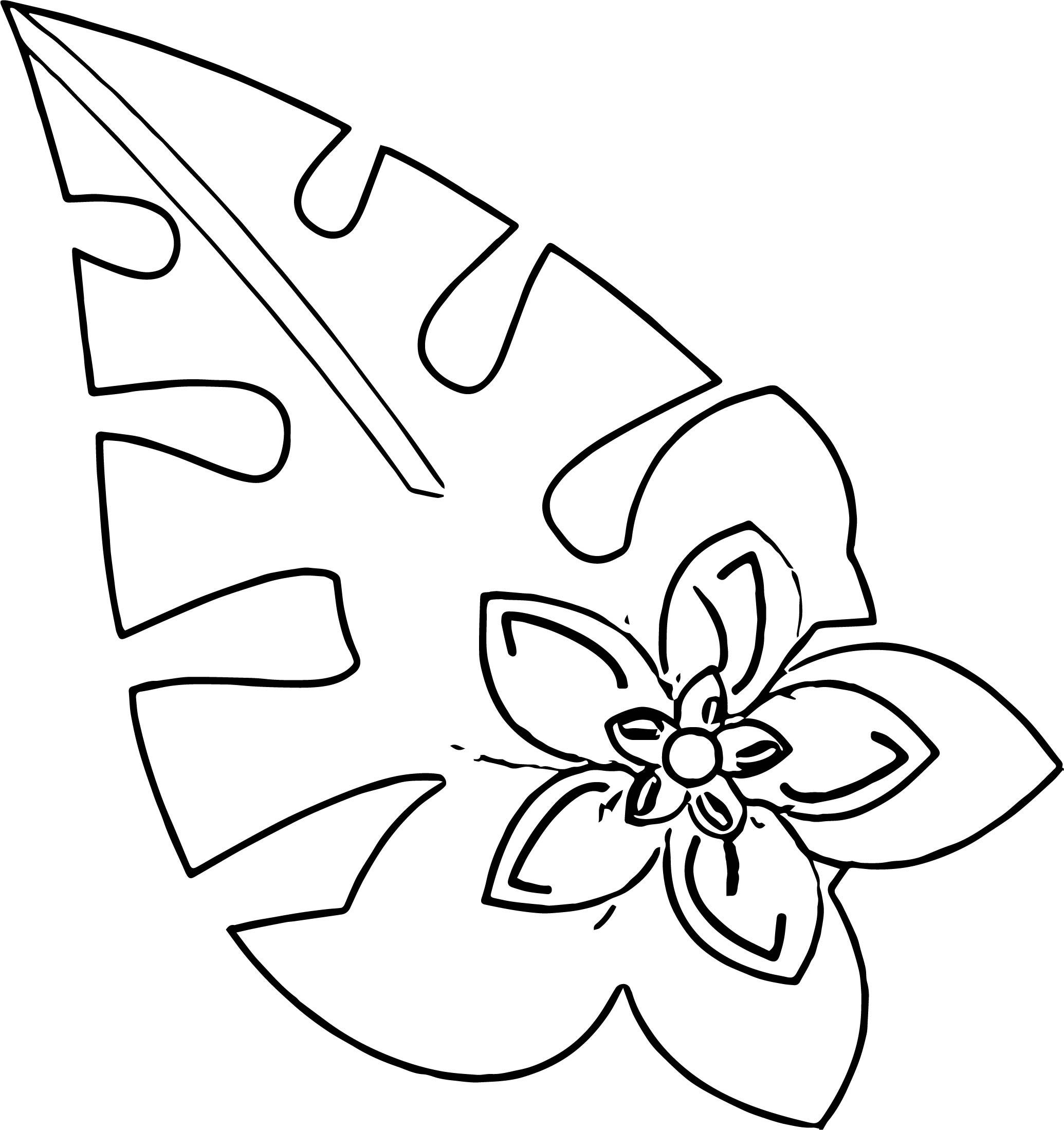 Hawaiian Flower Coloring Page WeColoringPage 20