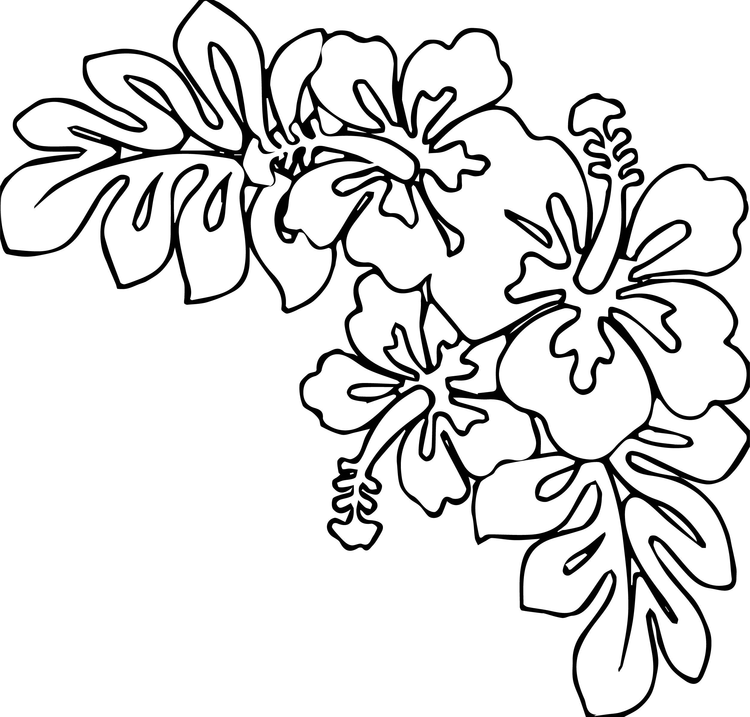 Hawaiian Flower Coloring Page WeColoringPage 23