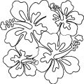 Hawaiian Flower Coloring Page WeColoringPage 25
