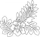 Hawaiian Flower Coloring Page WeColoringPage 26