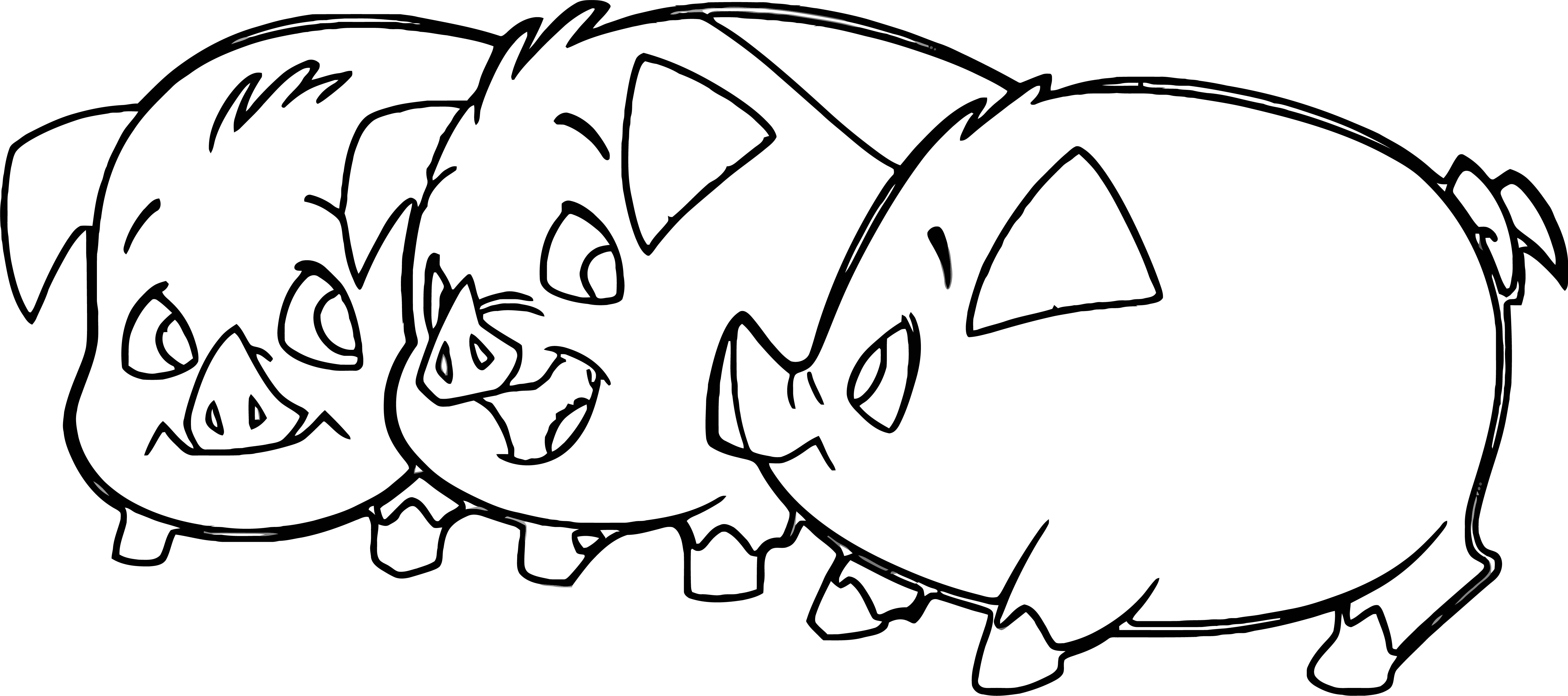 Home On The Range Three Pig Coloring Page