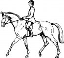 Horse Coloring Page Wecoloringpage 071