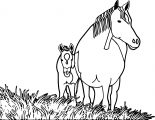 Horse Coloring Page Wecoloringpage 101