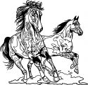 Horse Coloring Page Wecoloringpage 115