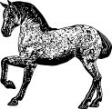 Horse Coloring Page Wecoloringpage 138